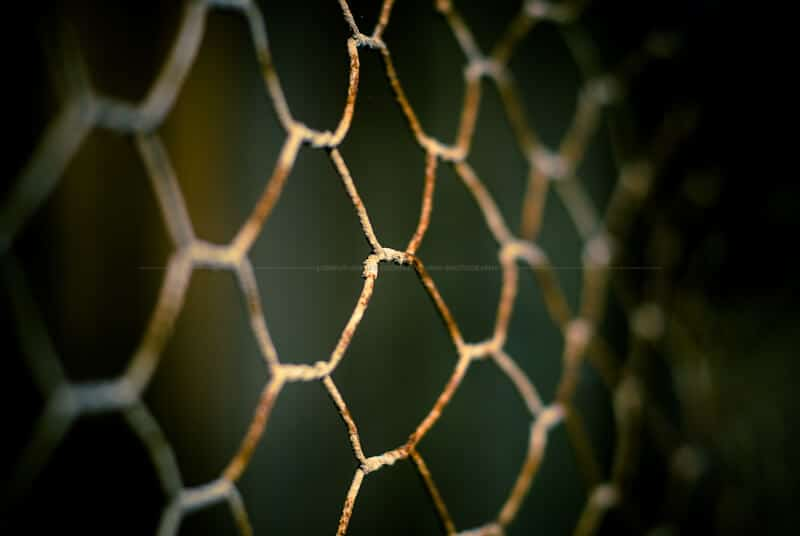 Rusted mesh fence
